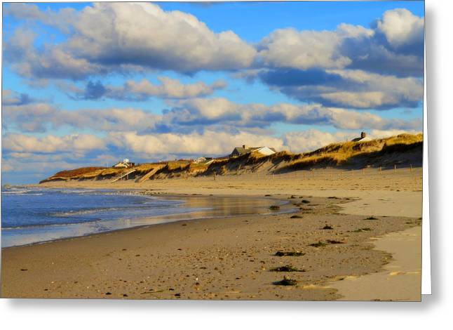 Cold Storage Beach Greeting Cards - Softly November Greeting Card by Dianne Cowen