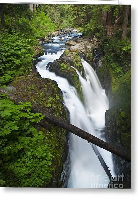 Beautiful Creek Greeting Cards - Sol Duc Falls Greeting Card by Greg Vaughn - Printscapes
