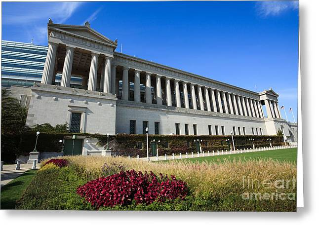 Roman Soldier Greeting Cards - Soldier Field Chicago Bears Stadium Greeting Card by Paul Velgos