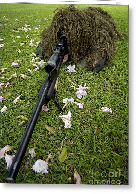 Hiding Greeting Cards - Soldier Practices Sniper Tactics Greeting Card by Stocktrek Images