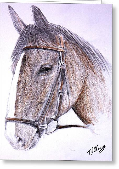 Horse Drawings Greeting Cards - Solemn Greeting Card by Terence John Cleary