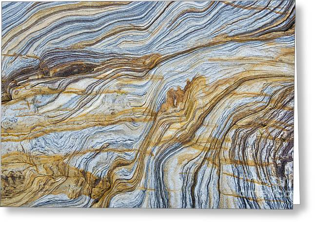 Stratum Greeting Cards - Solid Lines of Motion Greeting Card by Tim Gainey