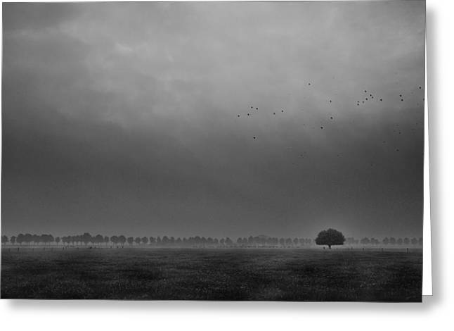 Mist Greeting Cards - Solitaire Greeting Card by Michiel Hageman