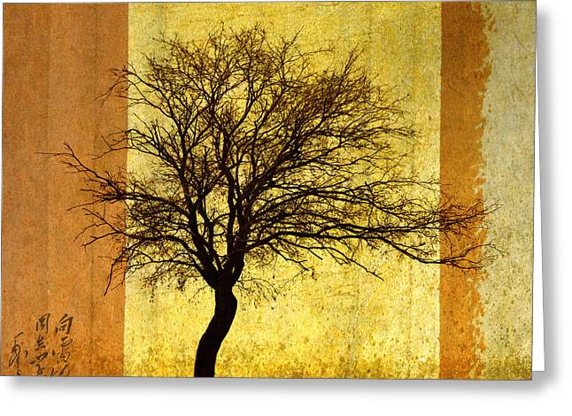 Bare Trees Greeting Cards - Solitary Greeting Card by Elena Nosyreva