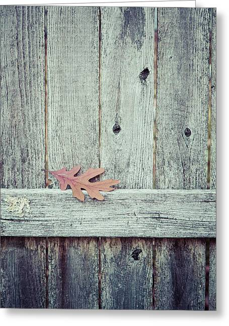 Solitary Leaf On Fence Greeting Card by Erin Cadigan