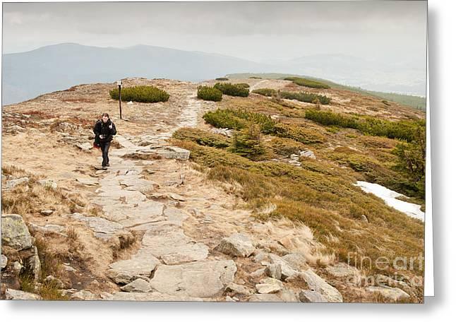 Solitary Tourist Trekking Greeting Card by Arletta Cwalina