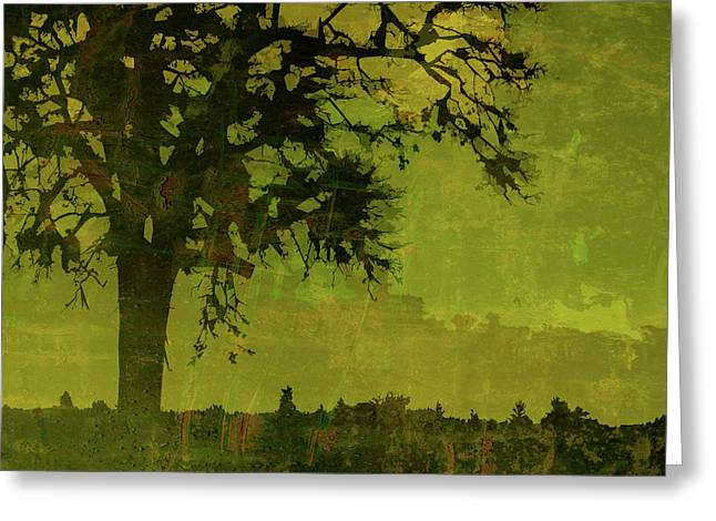 Olive Green Greeting Cards - Solitude Greeting Card by Bonnie Bruno