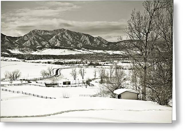 Snowy Field Greeting Cards - Solitude in Boulder County Greeting Card by Marilyn Hunt