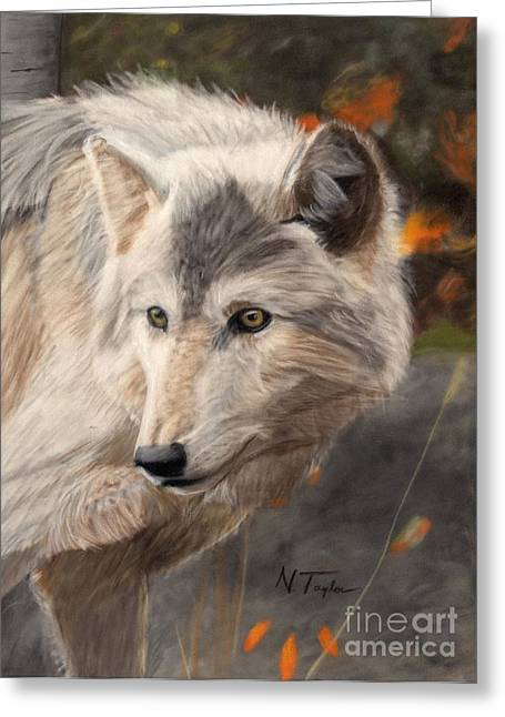 Wolf Pastels Greeting Cards - Solitude Greeting Card by Nichole Taylor