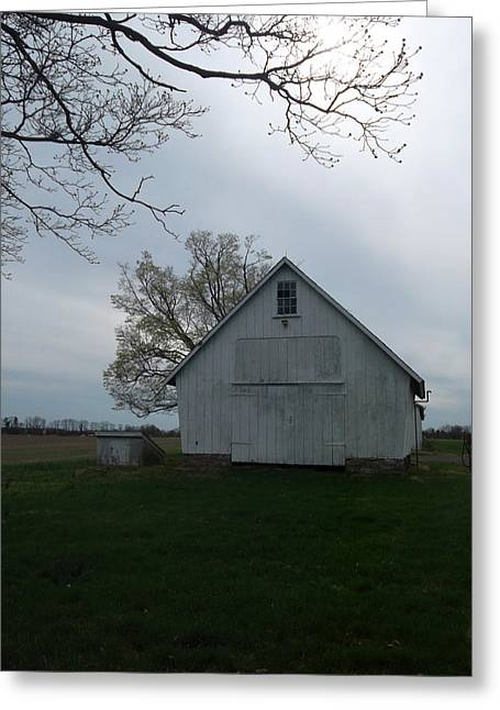 Outbuildings Greeting Cards - Solitude Greeting Card by Susan Esbensen