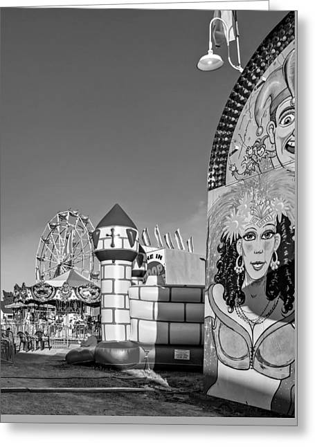Carousel House Greeting Cards - Something For Everyone - bw Greeting Card by Steve Harrington