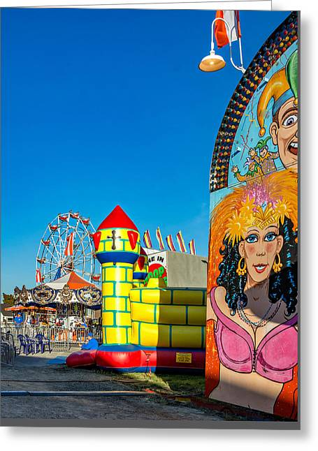 Carousel House Greeting Cards - Something For Everyone Greeting Card by Steve Harrington