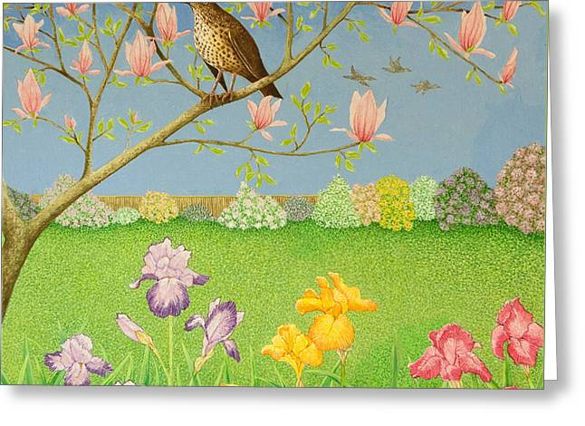 Thrush Greeting Cards - Something to Sing About Greeting Card by Pat Scott