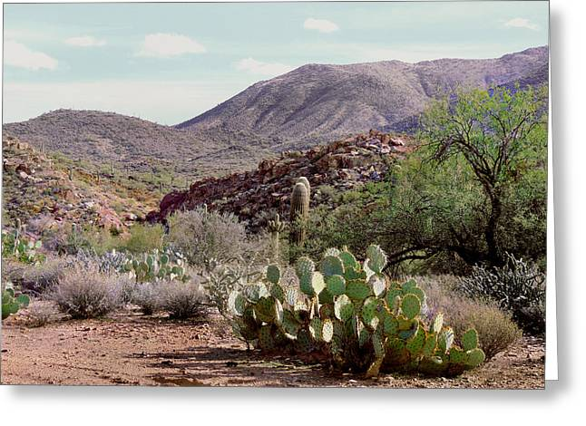 Cave Creek Cowboy Greeting Cards - Somewhere West Greeting Card by Gordon Beck