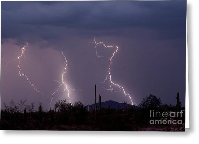 Photography Lightning Photographs Greeting Cards - Sonoran Storm Greeting Card by James BO  Insogna
