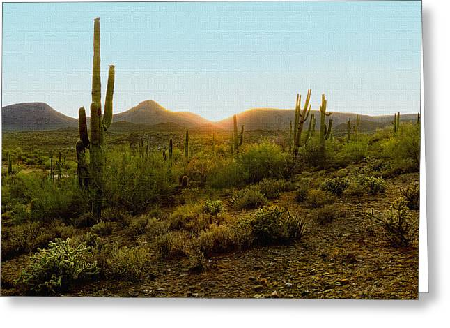 Cave Creek Cowboy Greeting Cards - Sonoran Sunset Greeting Card by Gordon Beck