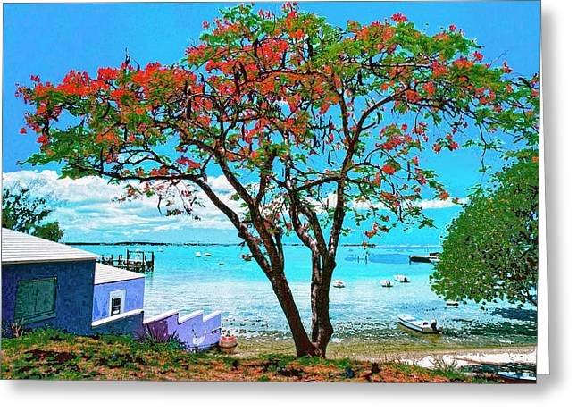 Lahaina Mixed Media Greeting Cards - Soon Come Greeting Card by Dominic Piperata