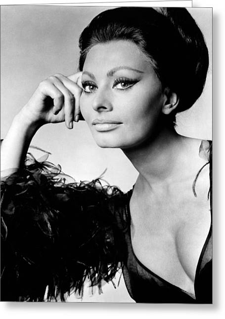 Sophia Loren Greeting Cards - Sophia Loren in Mono Greeting Card by Nomad Art And  Design