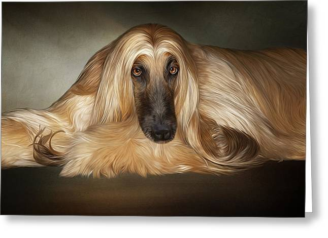 Dogs Digital Art Greeting Cards - Soulful Greeting Card by Sandy Oman