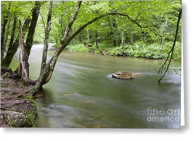 Water Flowing Greeting Cards - Souls Yearning Greeting Card by Finesse Fine Art