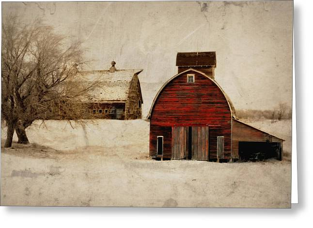 Barn Door Digital Greeting Cards - South Dakota Corn Crib Greeting Card by Julie Hamilton