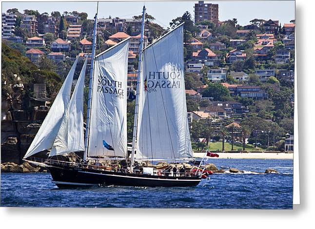 Tall Ship Greeting Cards - South Passage Cruises Sydney Harbour Greeting Card by Miroslava Jurcik