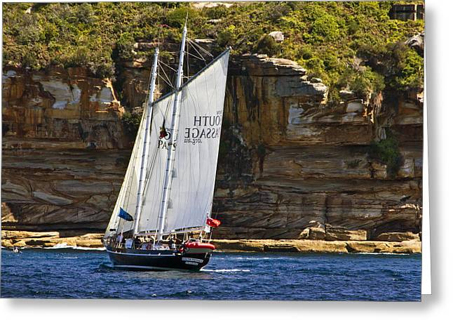 Tall Ship Greeting Cards - South Passage In Sydney Harbour Greeting Card by Miroslava Jurcik