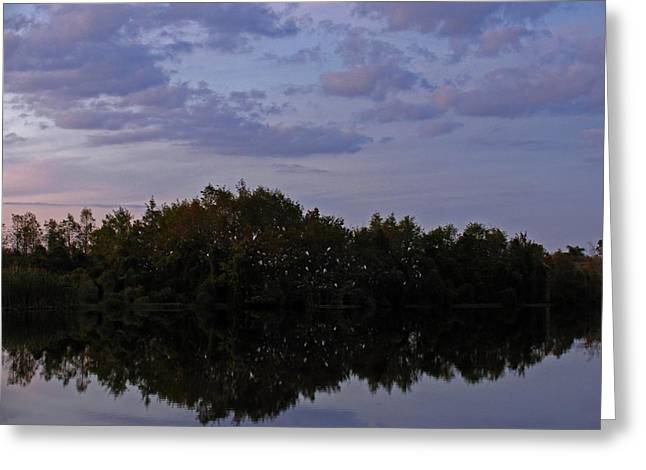 South West Florida Greeting Cards - South-West Florida Sunset Greeting Card by Juergen Roth