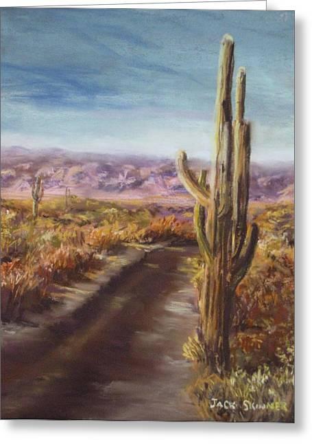 Jack Skinner Greeting Cards - Southern Arizona Greeting Card by Jack Skinner