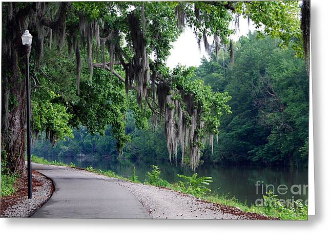 Table Greeting Cards - Southern Freeway Greeting Card by Skip Willits