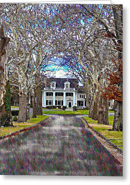 Tree Lines Digital Greeting Cards - Southern Gothic Greeting Card by Bill Cannon