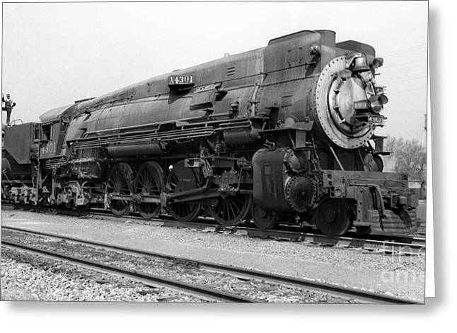 Southern Class Greeting Cards - Southern Pacific SP 4301 Mountain Class Mt-1 Steam Locomotive Greeting Card by Wernher Krutein