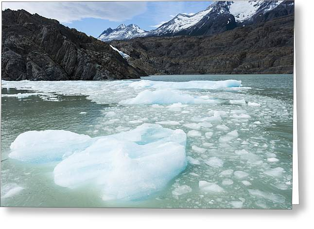 Grey Clouds Greeting Cards - Southern Patagonian Ice Field  Torres Greeting Card by Keith Levit