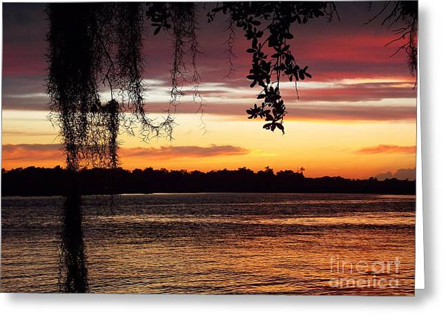 Covered Bridge Greeting Cards - Southern Sunset Greeting Card by Skip Willits