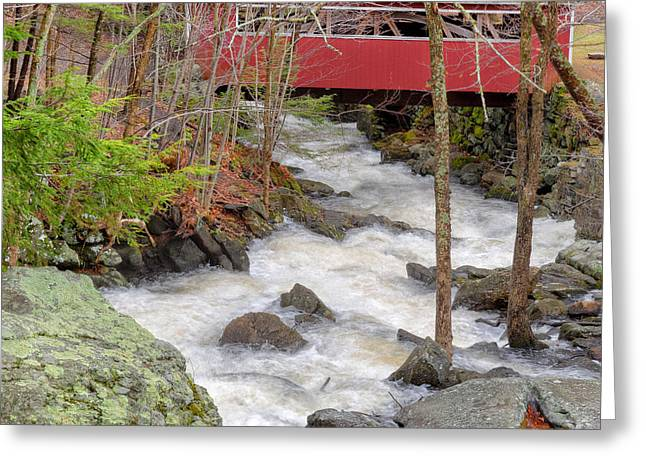 Connecticut Covered Bridge Greeting Cards - Southford Falls State Park Square Greeting Card by Bill Wakeley
