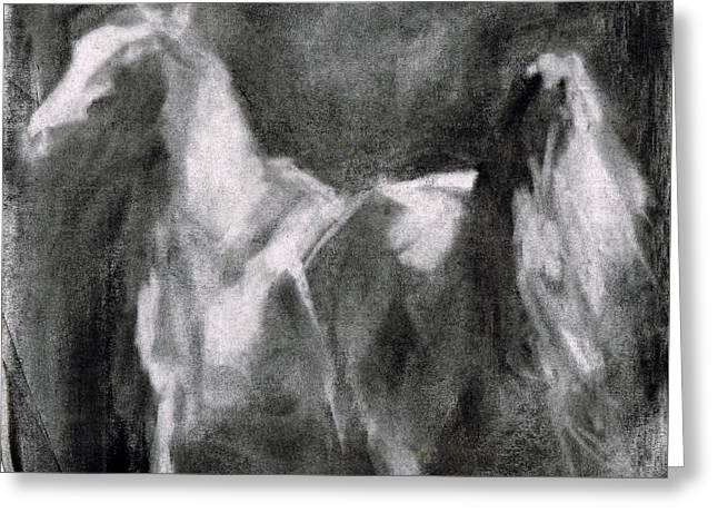 Western Pencil Drawings Greeting Cards - Southwest Horse Sketch Greeting Card by Frances Marino