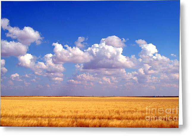 Liberal Greeting Cards - Southwestern Kansas Wheat Field Greeting Card by Catherine Sherman