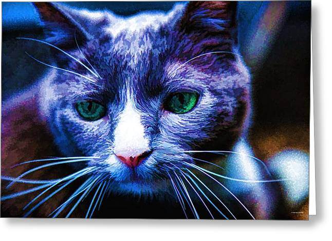 House Pet Greeting Cards - Swiss Greeting Card by Dennis  Baswell