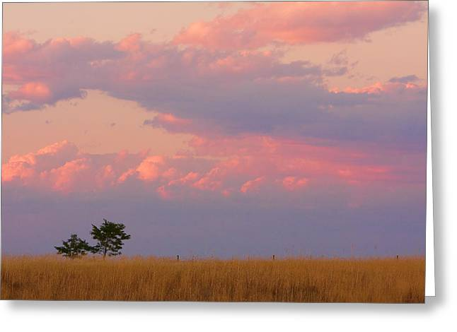 The Lightning Man Greeting Cards - Spacious Skies Amber Waves of Grain Boulder County Greeting Card by James BO  Insogna