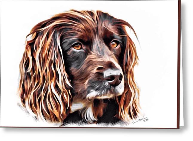 Puppies Drawings Greeting Cards - Spaniel Color Sketch Greeting Card by Scott Wallace
