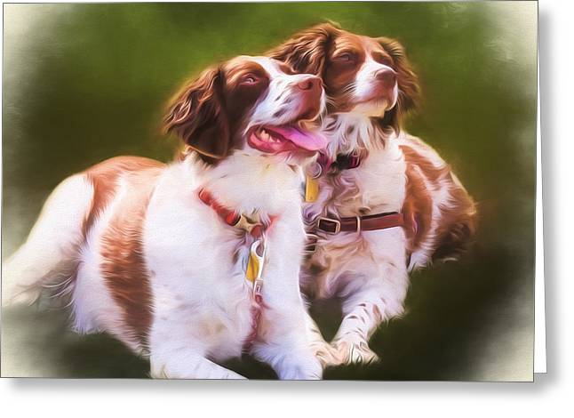 Spaniel Greeting Cards - Spaniels Greeting Card by Eleanor Abramson