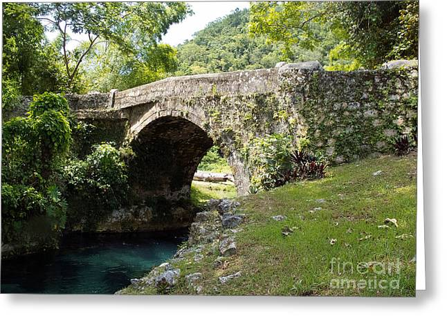 Historical Images Greeting Cards - Spanish Bridge over the White River Jamaica Greeting Card by Jason O Watson