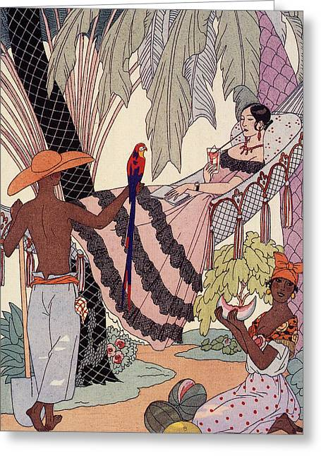 Women Dressed Drawings Greeting Cards - Spanish Lady In Hammock With Parrot Greeting Card by Georges Barbier