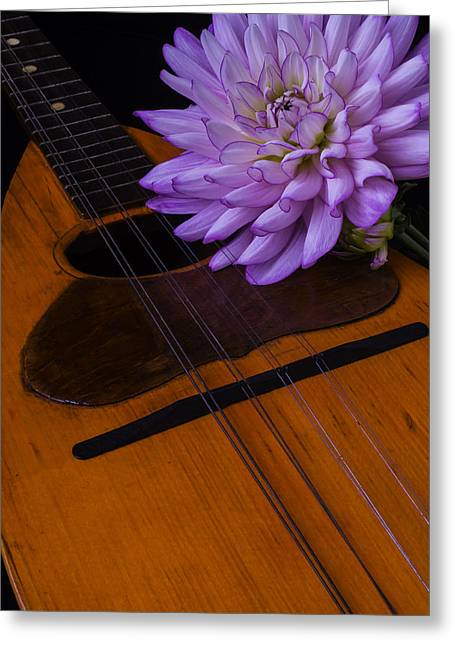 Spanish Mandolin And Dahlia Greeting Card by Garry Gay