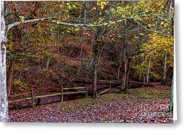 Sparkling With Colors - Natchez Trace Greeting Card by Debra Martz