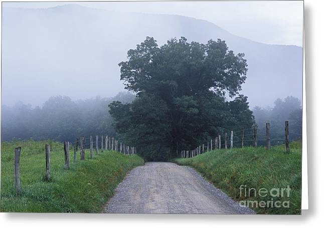 Gravel Road Greeting Cards - Sparks Lane - FM000117 Greeting Card by Daniel Dempster
