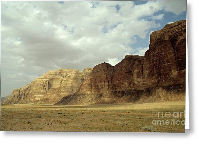 Valley Of The Moon Greeting Cards - Sparse tussock and rock formations in the Wadi Rum desert Greeting Card by Sami Sarkis
