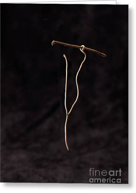 Spear Thrower  Greeting Card by Larry Braun