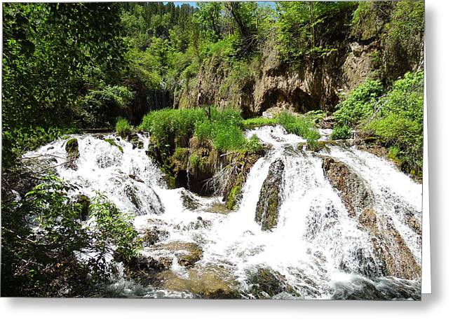 Fall Grass Greeting Cards - Spearfish Canyon Waterfalls Greeting Card by Pamela Pursel