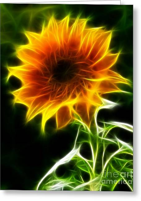 Flower Photos Mixed Media Greeting Cards - Spectacular Sunflower Greeting Card by Pamela Johnson